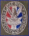 Boy-Scouts-BSA-Eagle-Scout-Patch-Emblem-