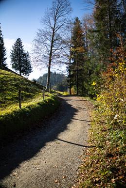Trail nach den Allenwinden in Richtung Hörnli
