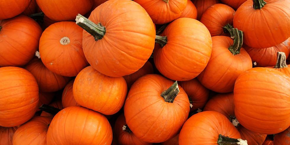 Pumpkin Decorating Craft Time