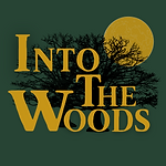 Into the woods Promo Poster.png