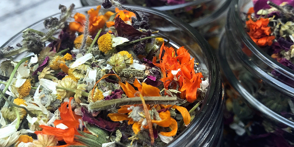 Growing Herbs for Tea w/ Sarah Lindlom- Free!