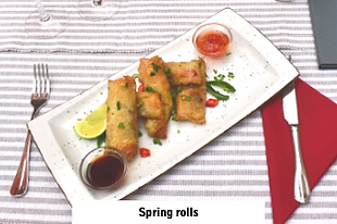 chinese food spring rolls in Dida Boža international restaurant in Vodice