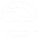logo dronizon 3.3wit.png
