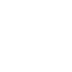 drone dronizon
