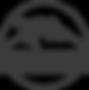 logo dronizon 3.3grijs.png