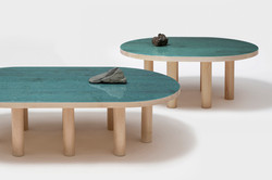 pond table with stones