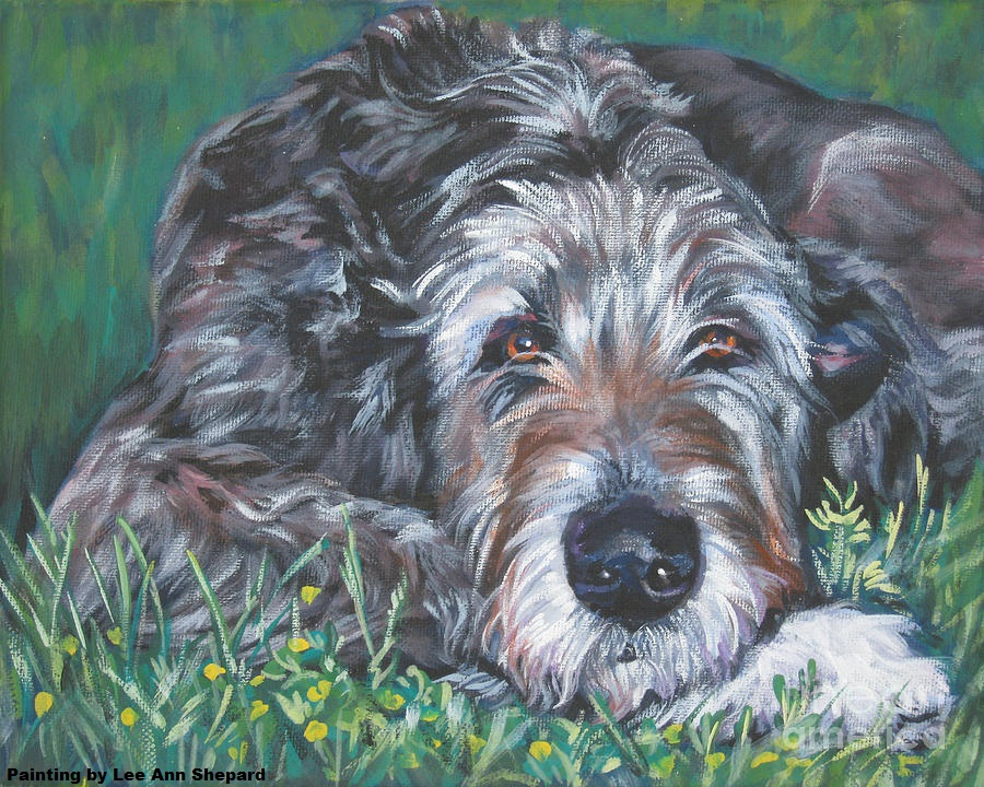 irish-wolfhound-lee-ann-shepard