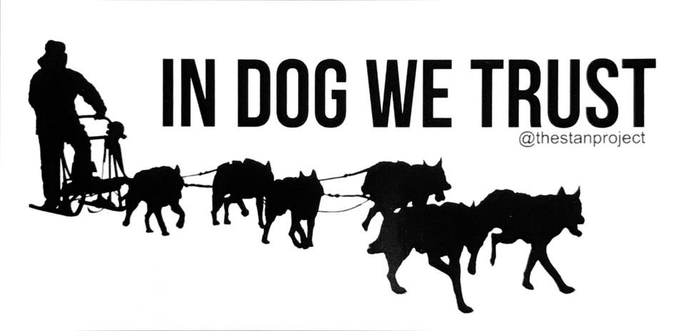 IN DOG WE TRUST Bumper sticker.jpg
