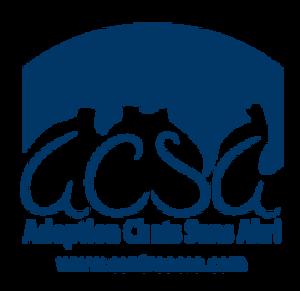 Adoption Chat Sans Abri