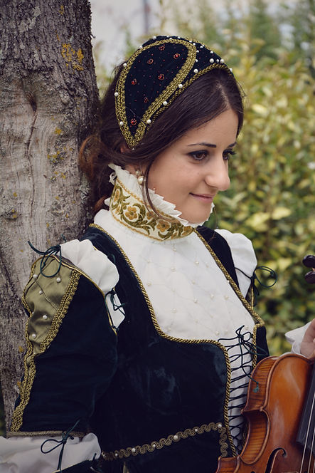 renaissance médieval musical entertainment in france