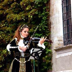 Violon Solo Électrique au château de La Verrerie