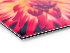 Foto-op-dibond-met-plexiglas-3mm-closeup-960x720-1-960x720.jpeg