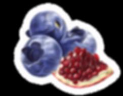 Pomegranate Blueberry Sorbet by Ciao Bono Gelato