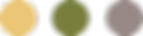 Home 3 - Colour circles.png