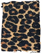 leopard_swatch_edited.png