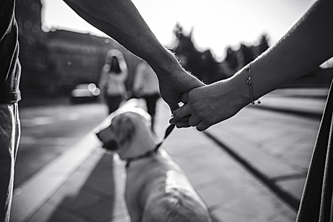 Hands of couple that holding dog.jpg