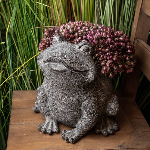 Freddie The Frog Plant Pot Holder