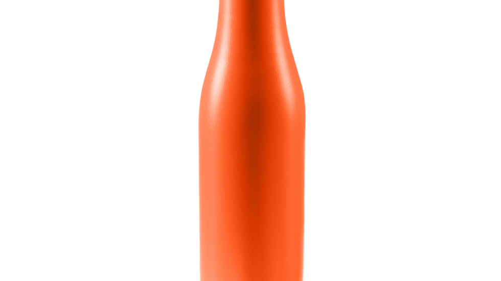 DRINCO® 17oz Stainless Steel Slim Water Bottle - Orange