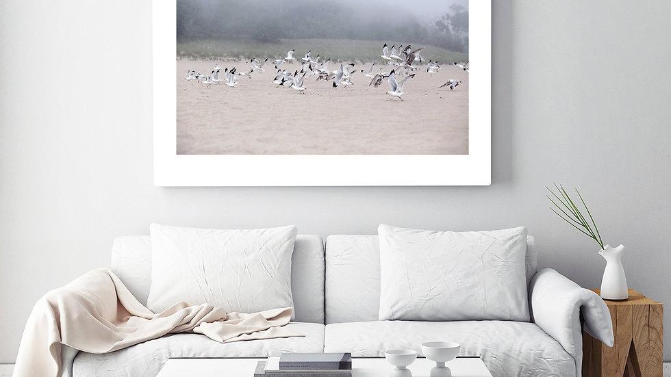 Fog and Friends - Fine Art Photograph