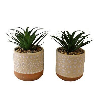 Set of 2 Faux Succulents In Ceramic Pots