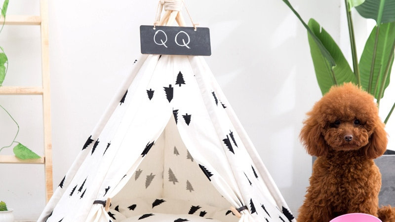 Puppy Teepee Bed
