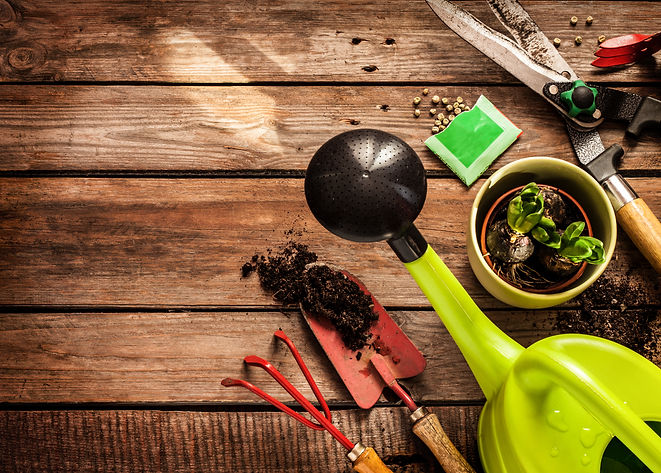 Gardening tools, watering can, seeds, pl