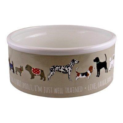 Large Ceramic Dog Bowl - 20cm