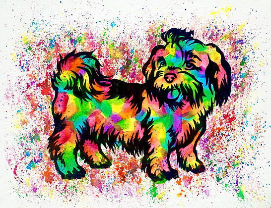 Shih Tzu Canvas Painting (Paint at Home Package)