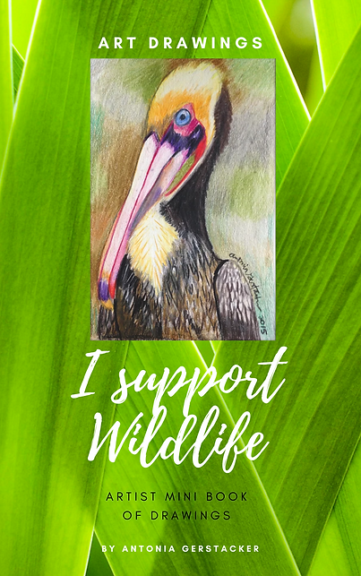 I support Wildlife (1).png