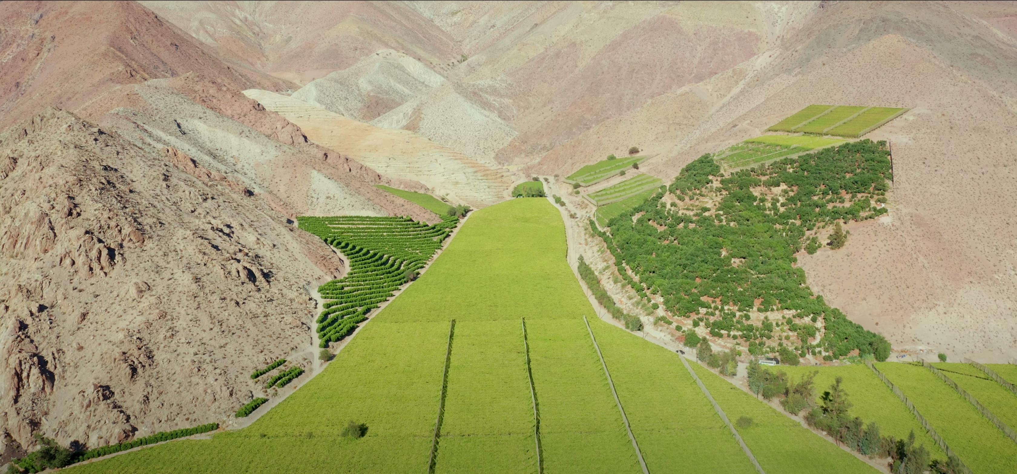 Guía Valle del Limarí