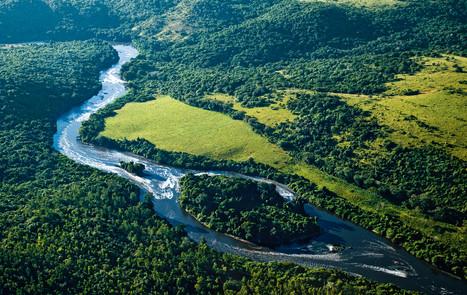 Uma viagem pelos biomas brasileiros