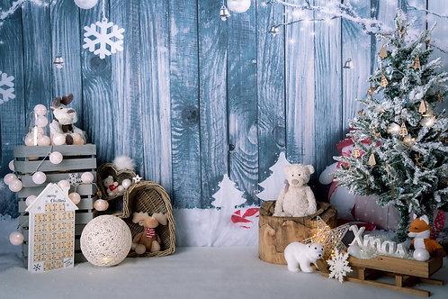 Mini Séances de Noël 2020