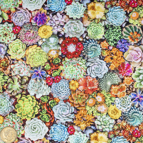 Standard Pad: Succulents and Cacti