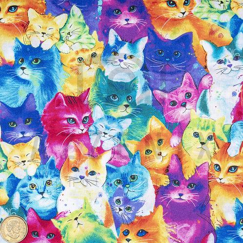 Flared Pad: Rainbow Kittens