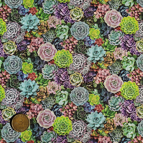 Standard Pad: Small Succulents