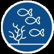 ecosistema-56.png