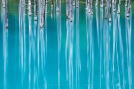 青い池 Blue Pond