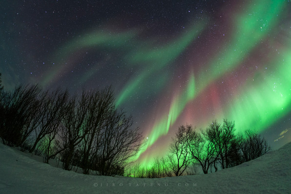 オーロラ Northern Lights