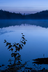 白駒池 Shirakoma pond