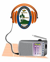 RadioPinal.png