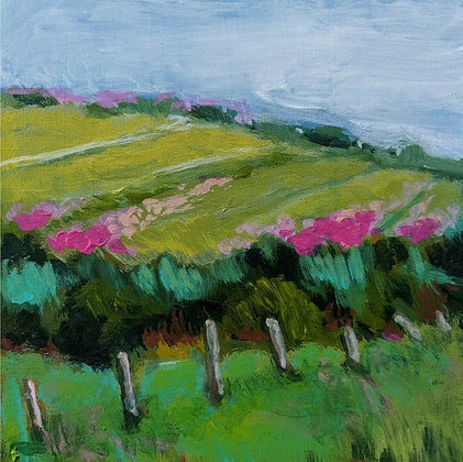 """Forgotten Pasture"""