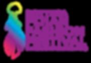 FJFF19 - Nina Logo NO GLOW - boxed.png
