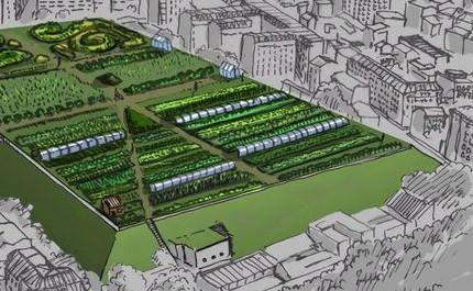 Produção alternativa de alimentos para grandes metrópoles: exemplo de Londres e NY