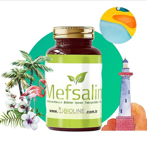 Mefsalin 500 mg -  90 Tablet