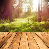 Wooden floor terrace over forest backgro