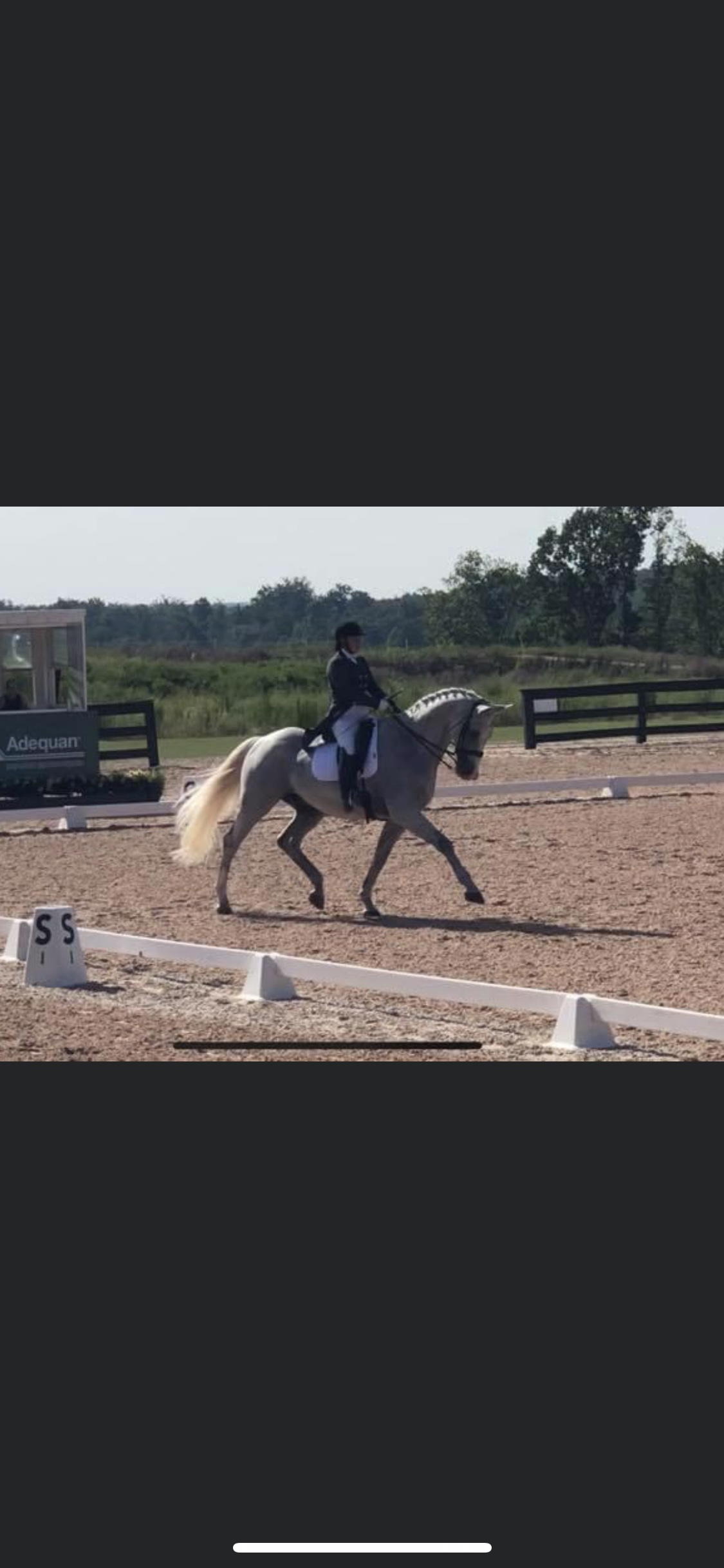 Taylor and Gandalf PSG Tryon