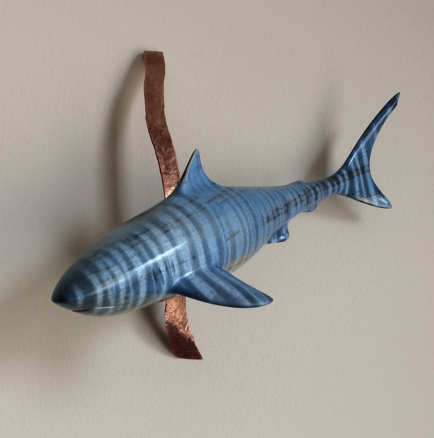 Tiger Shark (sold)