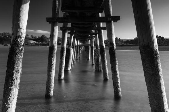 Whananaki Footbridge B&W 5735 EM.jpg