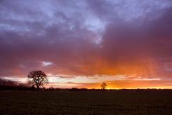 Sunrise_rainfall__ed_marshall.jpg