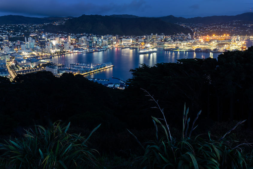 Wellington 4541 EM.jpg